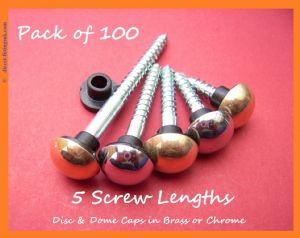 "100x, 3/4""- 2"" [19-50mm] DOMED Mirror Screws. BRASS & CHROME. 100pk+"